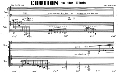Caution to the Winds Website Pages_Page_3