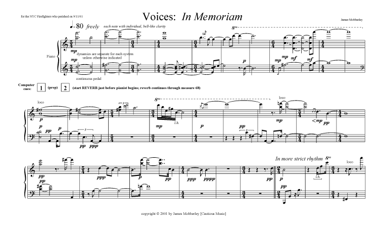 Voices in Memoriam Website Pages_Page_3